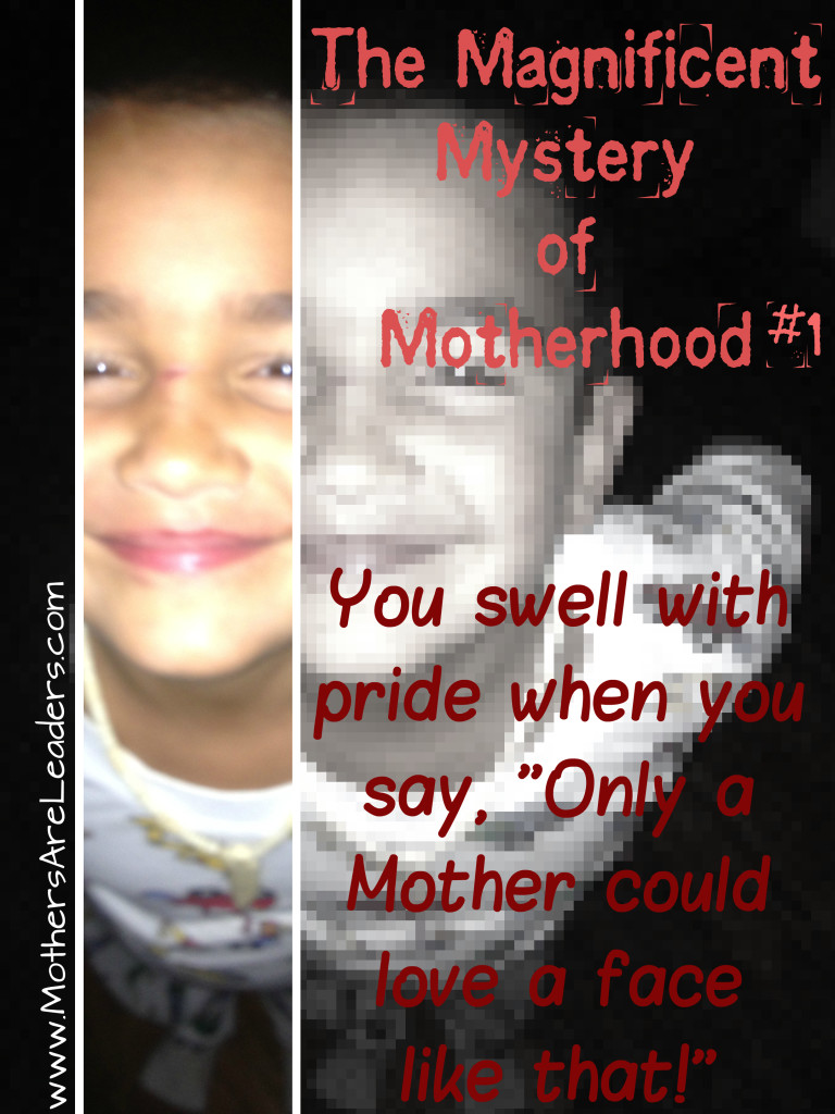 Mag Myst of Motherhood 1